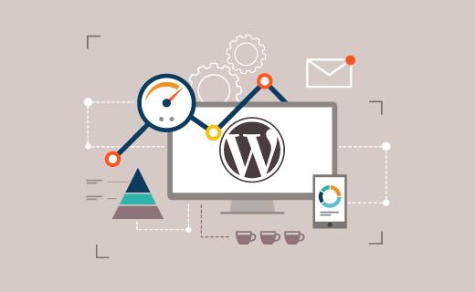 WordPress Admin Şifresi Sıfırlama