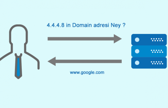 Ters DNS – Reverse DNS Kayıdı